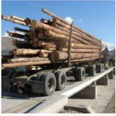 Pont-bascule 7563 pour camions